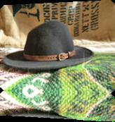 Vign_chapeau_2
